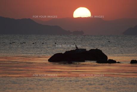 朝の海 日の出の写真素材 [FYI00473833]