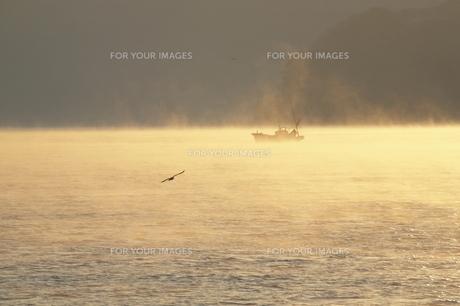 朝の海と漁船の写真素材 [FYI00473866]