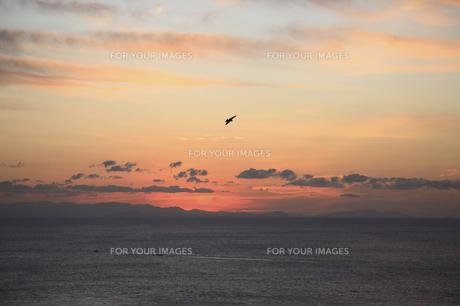 朝の海の写真素材 [FYI00473874]