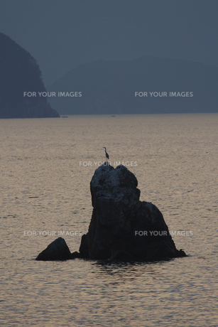 海の写真素材 [FYI00473886]