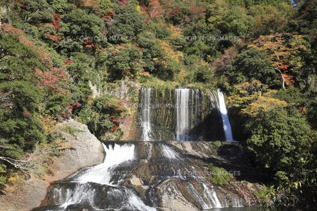 竜門の滝の写真素材 [FYI00473901]
