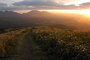 三平山のススキと蒜山の写真素材 [FYI00473968]