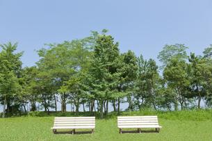 2つのベンチの写真素材 [FYI00474017]