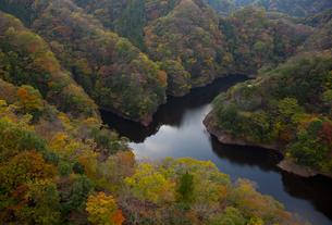 竜神ダム湖の紅葉の写真素材 [FYI00474147]