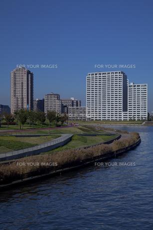 隅田川の都立汐入公園と高層マンションの写真素材 [FYI00474152]