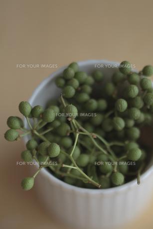 器に入った山椒の実の写真素材 [FYI00474324]