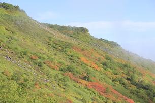 赤岳登山コース紅葉の写真素材 [FYI00474410]