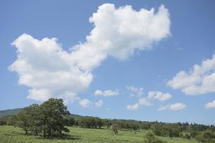 藻琴山と青空の写真素材 [FYI00474413]