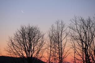 朝焼けと三日月の写真素材 [FYI00474436]