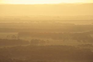 朝日に染まる釧路湿原の写真素材 [FYI00474484]