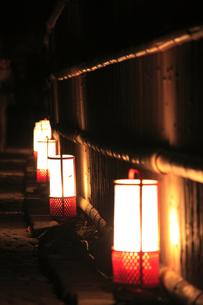 嵐山花灯路の写真素材 [FYI00474588]
