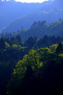 長浜市から見える山並みの新緑の写真素材 [FYI00474644]