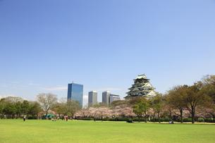 大阪城とソメイヨシノとビル群の写真素材 [FYI00474756]