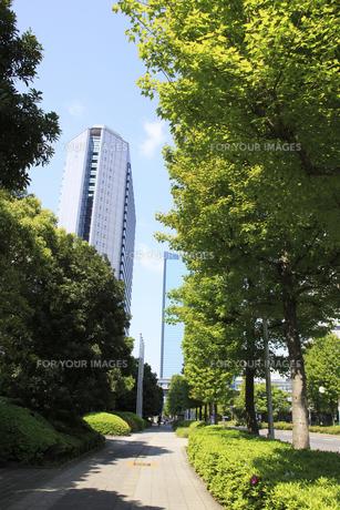 大阪ビジネスパークの素材 [FYI00474769]