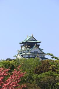 大阪城天守閣の写真素材 [FYI00474781]