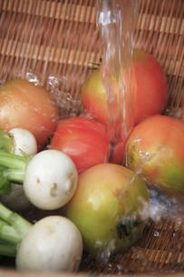 水で洗うカブとトマトの写真素材 [FYI00474852]