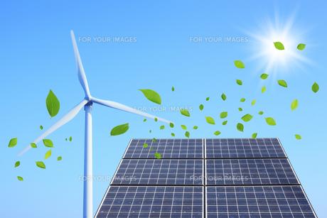 ソーラーパネルと風車と葉っぱの写真素材 [FYI00475111]