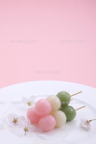 三色団子とソメイヨシノの写真素材 [FYI00475153]