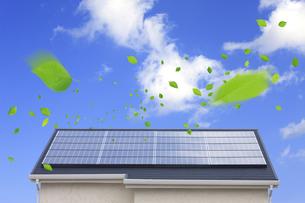 太陽光発電の屋根と新緑の葉っぱの写真素材 [FYI00475158]