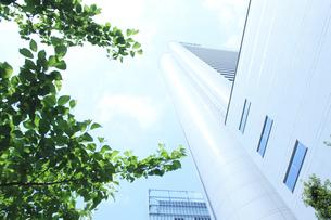 大阪市北区のビル街の写真素材 [FYI00475178]