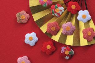 梅の飾りと扇の写真素材 [FYI00475212]