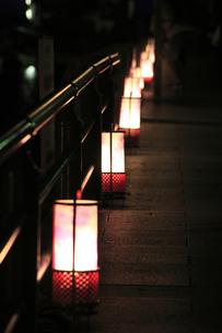 嵐山花灯路の写真素材 [FYI00475220]