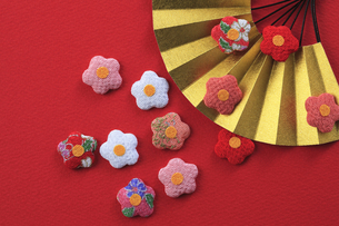 梅の飾りと扇の写真素材 [FYI00475224]