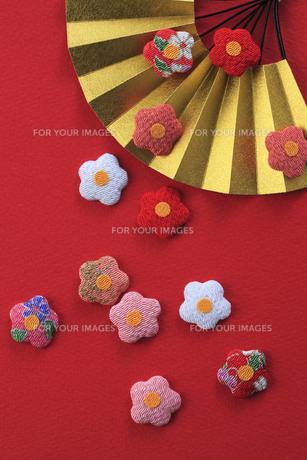 梅の飾りと扇の写真素材 [FYI00475225]