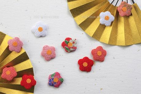 金色の扇子と梅の花の飾り物の写真素材 [FYI00475252]