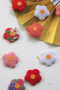 金色の扇子と梅の花の飾り物の写真素材 [FYI00475260]