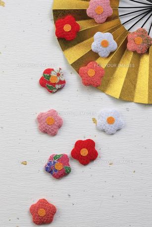 金色の扇子と梅の花の飾り物の写真素材 [FYI00475261]
