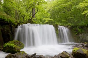 奥入瀬渓流の銚子大滝の写真素材 [FYI00475347]