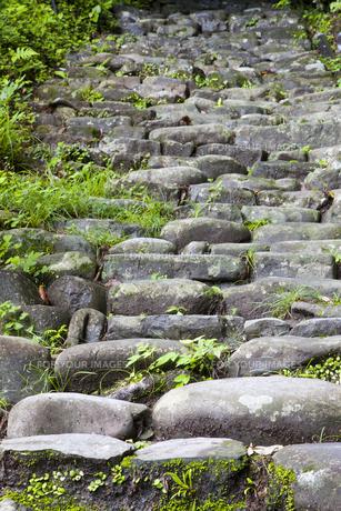 熊野本宮大社参道脇の石畳の道の写真素材 [FYI00475354]