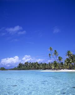 海と島とヤシの木の写真素材 [FYI00475646]