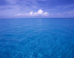海と水平線と空の写真素材 [FYI00475768]