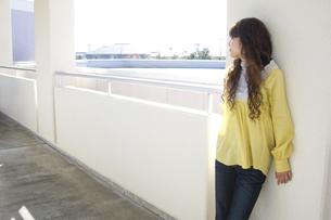 若い女性の写真素材 [FYI00476535]