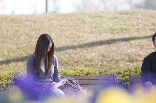 ベンチに座る女性の写真素材 [FYI00476618]
