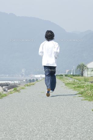 ジョギングをする男性の後姿の写真素材 [FYI00476627]