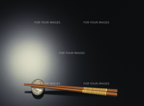 箸の素材 [FYI00476901]