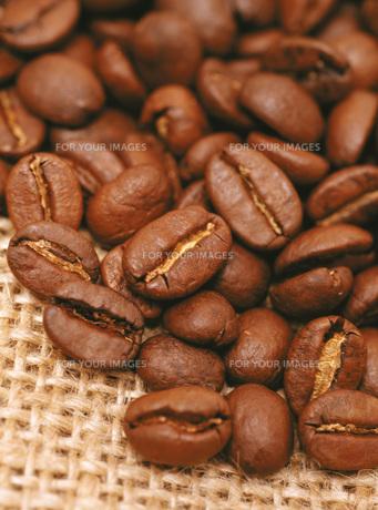コーヒー豆の素材 [FYI00476920]