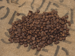 コーヒー豆の素材 [FYI00476926]
