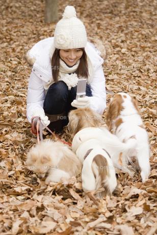 犬と散歩中の女性の写真素材 [FYI00477783]