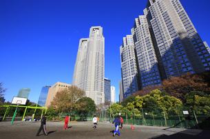 東京都庁周辺の写真素材 [FYI00477839]