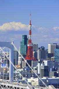 東京タワーとビル群の写真素材 [FYI00477865]
