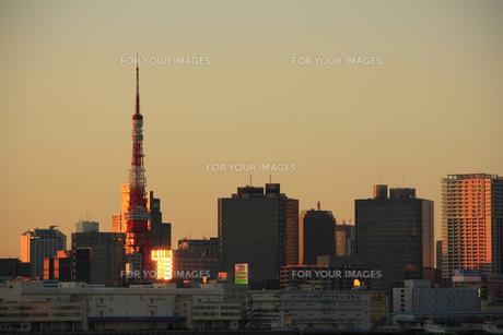 東京タワーとビル群夕景の写真素材 [FYI00477866]