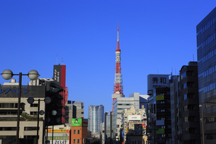 浜松町と東京タワーと六本木の写真素材 [FYI00477871]