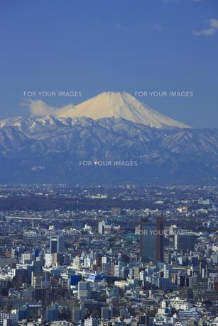 新宿方面の街並みと富士山の素材 [FYI00477875]