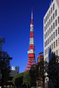 東京タワーと青空の写真素材 [FYI00477882]