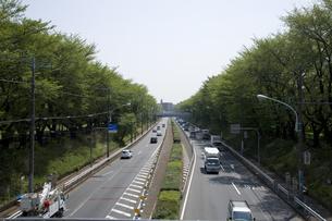 林の中の幹線道路の写真素材 [FYI00478621]