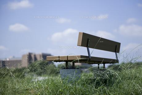 ベンチがある丘の風景の写真素材 [FYI00478801]